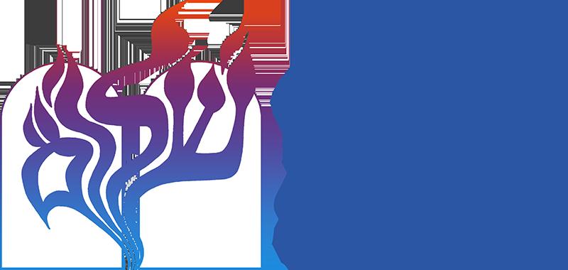 Temple Shalom logo